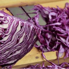 cómo cocinar el repollo